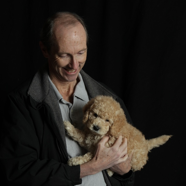 golden Winston puppy with man